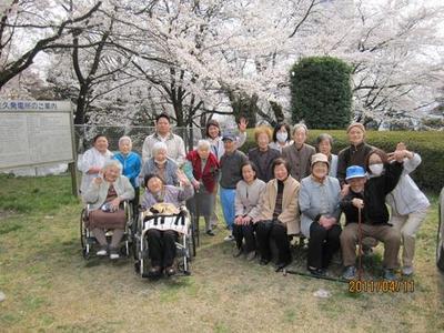 明月 桜ドライブ1.jpg