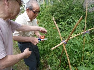クリニック通所平成26.8月号②.JPG