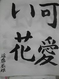 文芸 近藤辰雄様.JPG